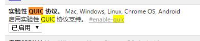 Chrome 开启 QUIC 协议